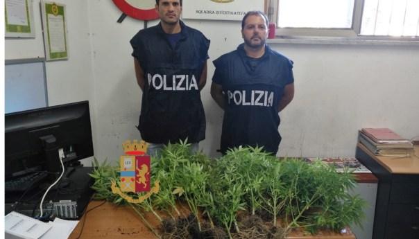 Fuorigrotta, coltiva marjuana sul balcone: denunciato 44enne