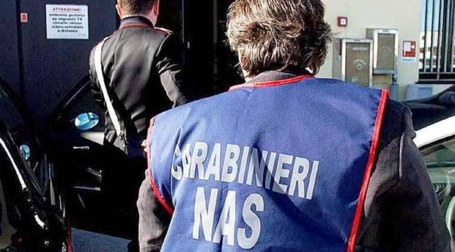 LICOLA/ I Nas sequestrano in via San Nullo 25 chili di frutti di mare privi di tracciabilità