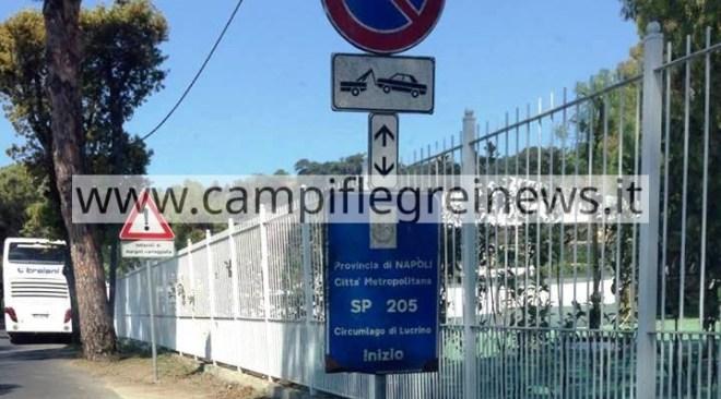 ULTIMORA/ Chiuse da domani al 28 giugno le strade attorno al lago Lucrino e Averno per abbattere 35 pini