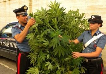 MONTERUSCIELLO/ Fermato per un controllo e trovato in possesso di marijuana: arrestato un 27enne
