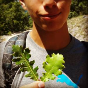 Querce ai Campi Natura - Lazio - RedFox Summer Camp
