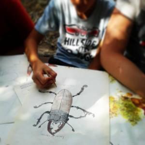 Programma - Campi Natura - Lazio