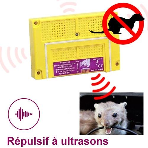Anti Rongeur Ultrason Idees