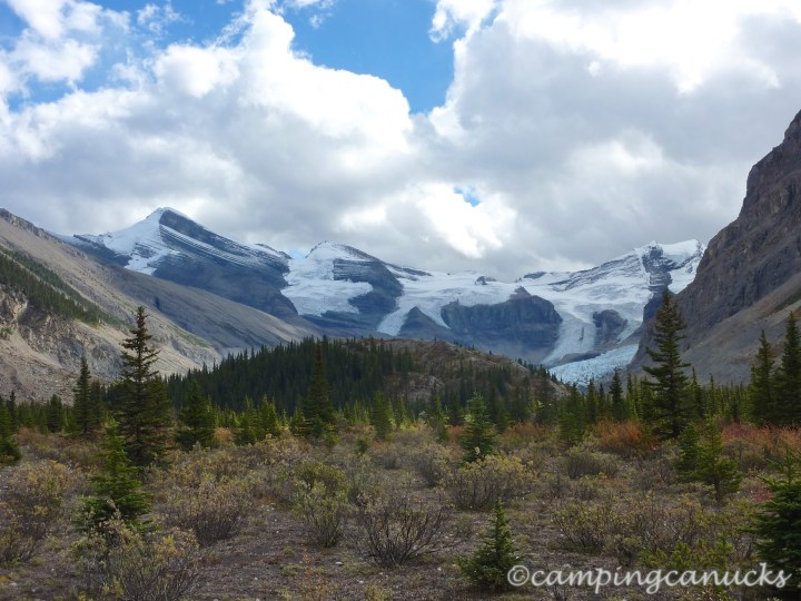 Last view of Robson Pass from the valley