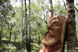 bosco delle impressioni alpe di comana