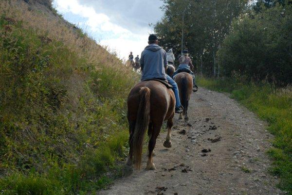 forfait randonnée à cheval