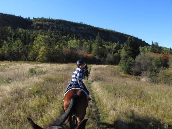 Equitation au ranch du fjord