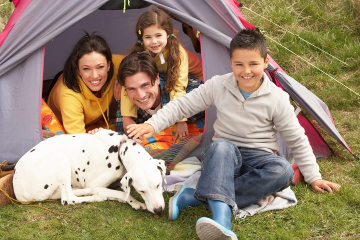 Young camping family with dog