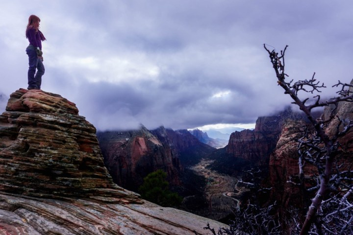 Zion in the Winter 1