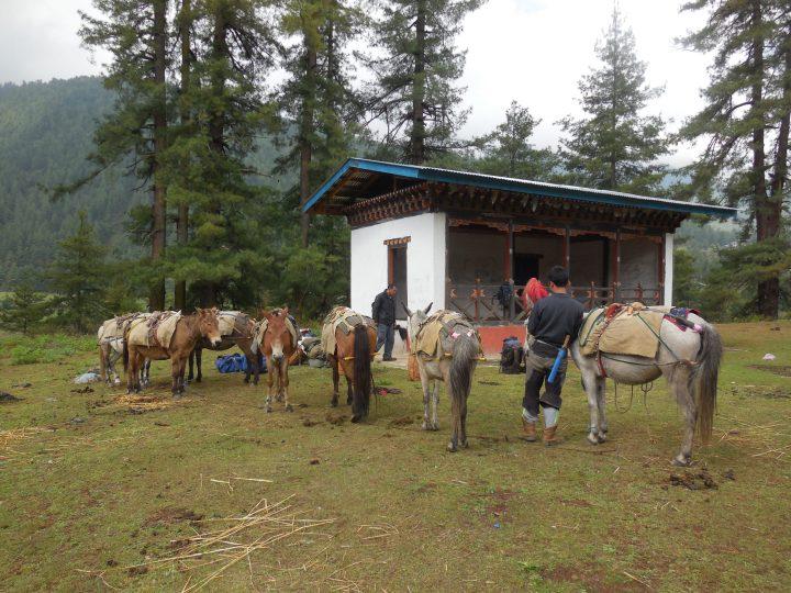 Trekking In Bhutan 16