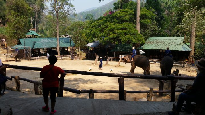 Northern Thailand 23