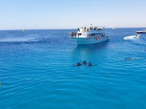 Red Sea Riviera 21