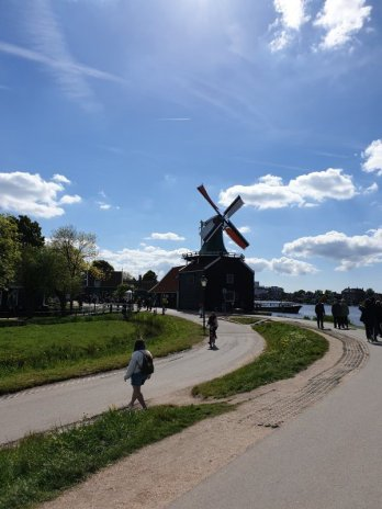 A windmill on the Zaan River next to the village