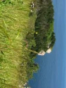 Le bout du monde à Cap-Gaspé
