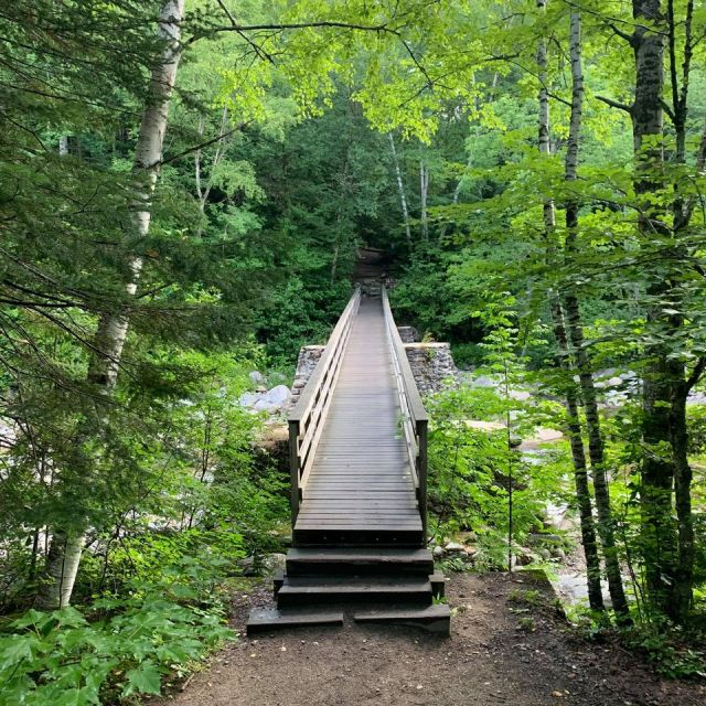 Franconia Brook Foot Bridge