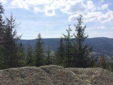 Sępia Góra 15