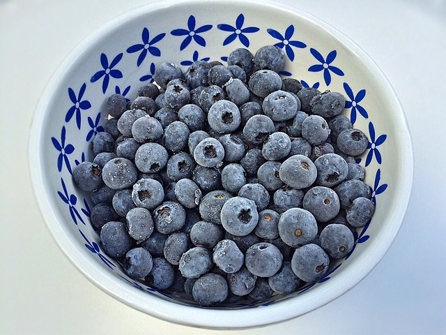 how-to-freeze-dry-blueberries-at-home