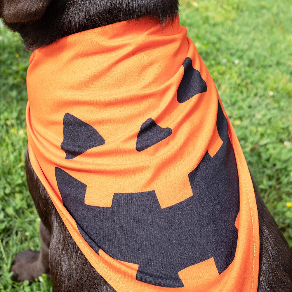 Halloween Pet Bandana