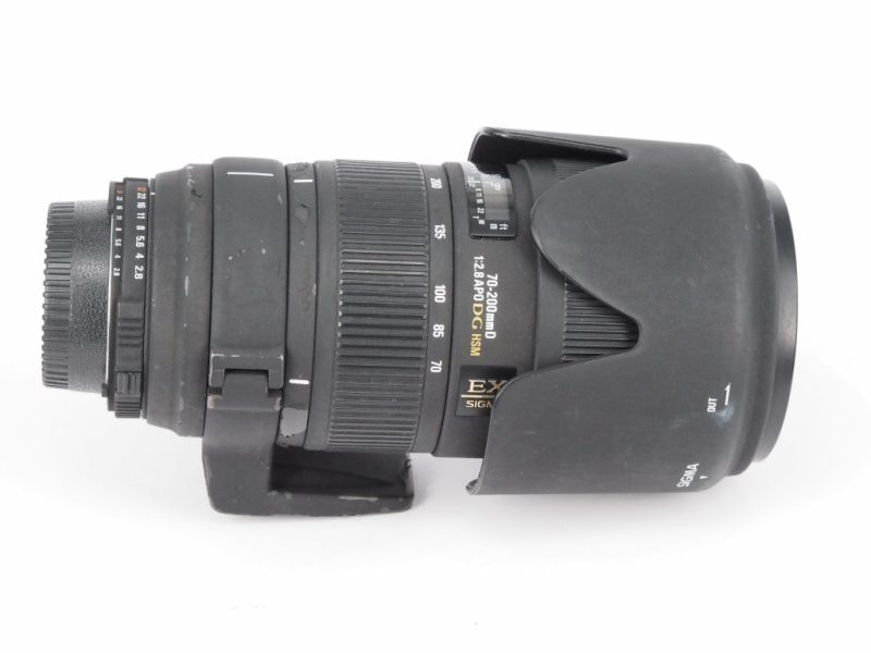 P5050041 scaled