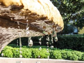 close-up-of-water-drops