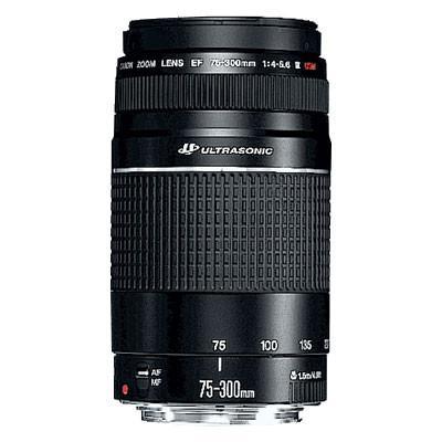 Canon EF 75-300mm f4-5.6 USM III Lens