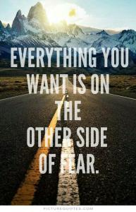 everything-you-want-is-on-the-other-side-of-fear-quote-1
