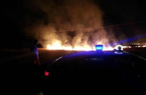 Campobello, Sterpaglie in fiamme attaccano un uliveto sulla provinciale per Granitola