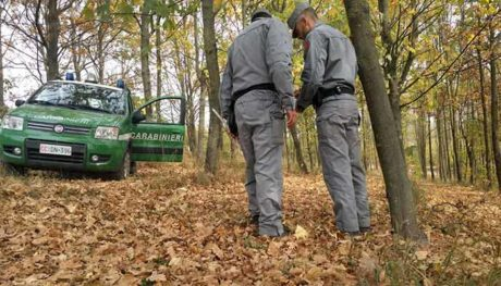 Rovigo: fanghi di depurazione sversati in terreni agricoli, 7 arresti