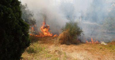 Campobello. Prevenzione rischio d'incendi: emanata ordinanza sindacale