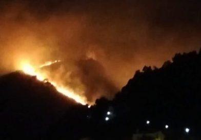San Martino delle Scale: scoperto l'autore di alcuni incendi del 2017