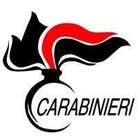 L'Arma dei Carabinieri esprime le condoglianze per la morte del Luogotenente C.S. Mario D'Orfeo e del Maresciallo Maggiore Fabrizio Gelmini