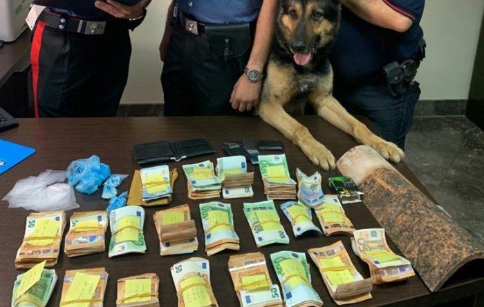 Il cane Ulisse trova crack: arresto per 23enne e sequestro di 50.000 euro