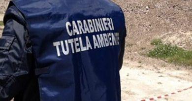 Porto di Livorno: sequestrate 11 tonnellate di rifiuti speciali