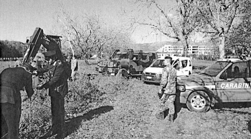 Sequestrata azienda di giardinaggio: alberi uccisi dal punteruolo rosso bruciati in un terreno