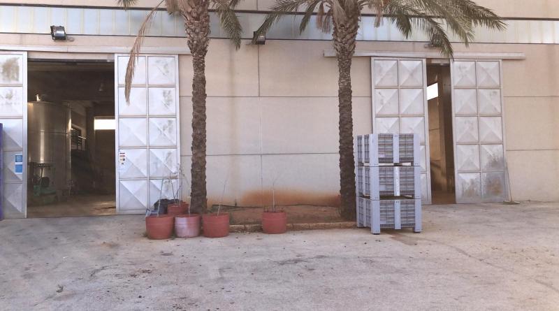 [Amministrative 2020] Campobello. Il Candidato Passanante in visita presso le aziende agricole Caro e Passanante