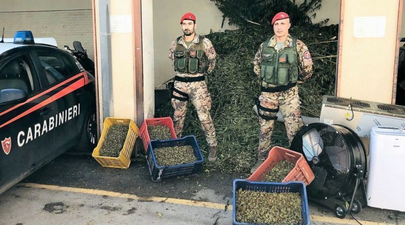 Paternò. Operazione antidroga, sequestrati 1.300 chili di marijuana: 6 arresti ( Foto & Video)