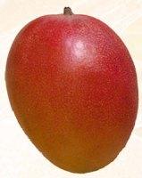 Propiedades del mango Kent