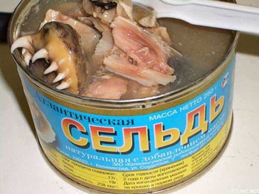 canned-fish-mouths