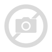 Harry Potter Hogwarts Money Bank Campus Gifts