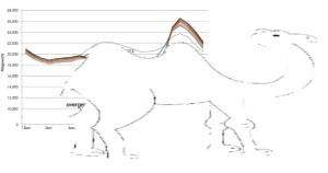Immagine Camello