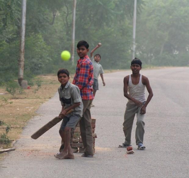 Sports_Cricket