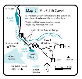 EdithCvl