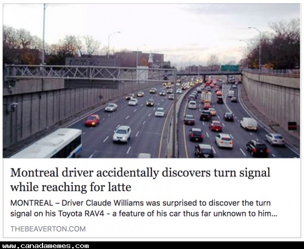Montreal driver accidentally discovers turn signal while reaching for latte