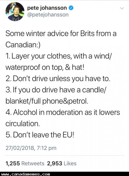 Advice to you Brits!