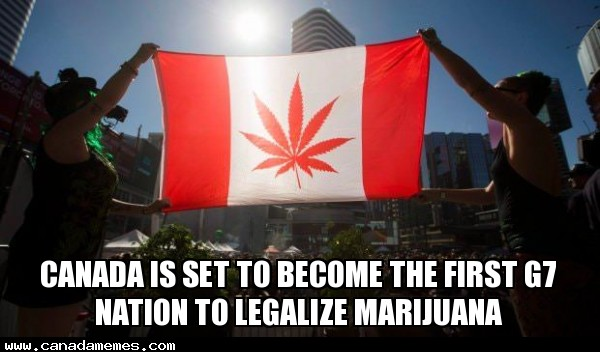Canada is set to become the first G7 nation to legalize marijuana - How do you feel about it?