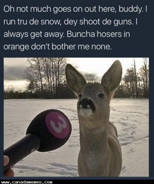 🇨🇦 Canadian Deer