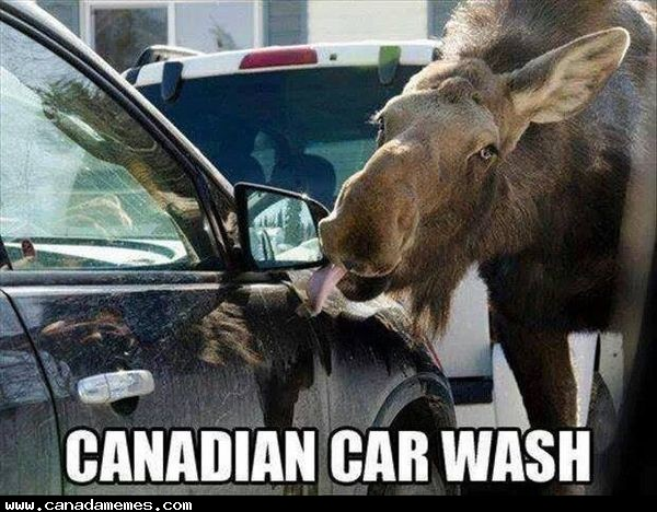 🇨🇦 Going to the car wash