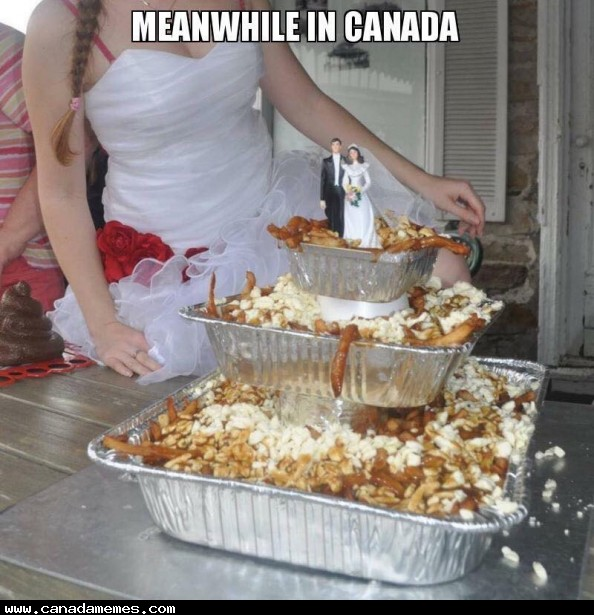 🇨🇦 The most Canadian wedding