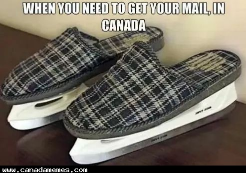 🇨🇦 How Canadians get their mail