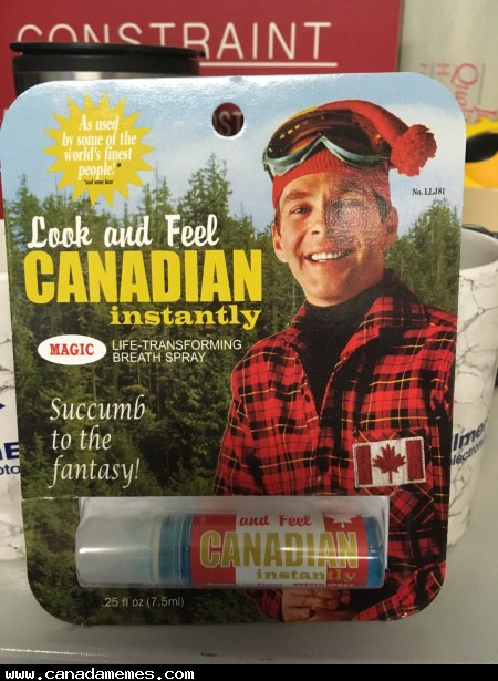 🇨🇦 It's probably All Dressed or Maple Syrup flavoured